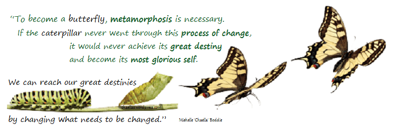 caterpillars-metamorphosis-to-butterfly-chaellas-wordpress-com-quote