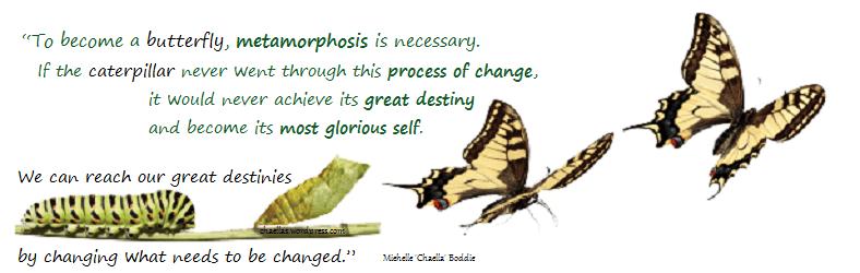 caterpillars-metamorphosis-to-butterfly-chaellas-wordpress-com-quote