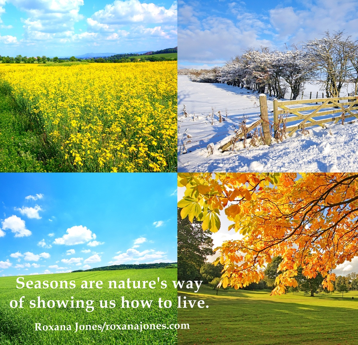 Quotes About Changing Seasons inspirational motivational image quotes quotations quotes of the  Quotes About Changing Seasons